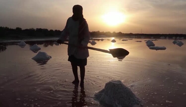 Iraqi families harvest salt by hand to make ends meet